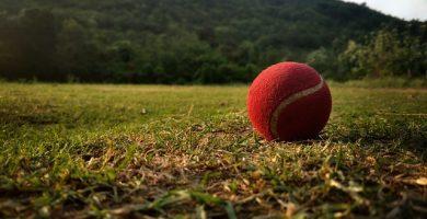 Bola de cricket