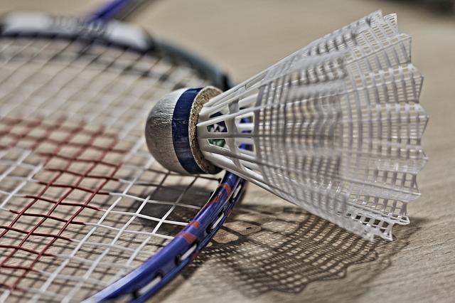Imagen pelota badminton