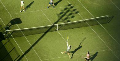 pelotas tenis cesped